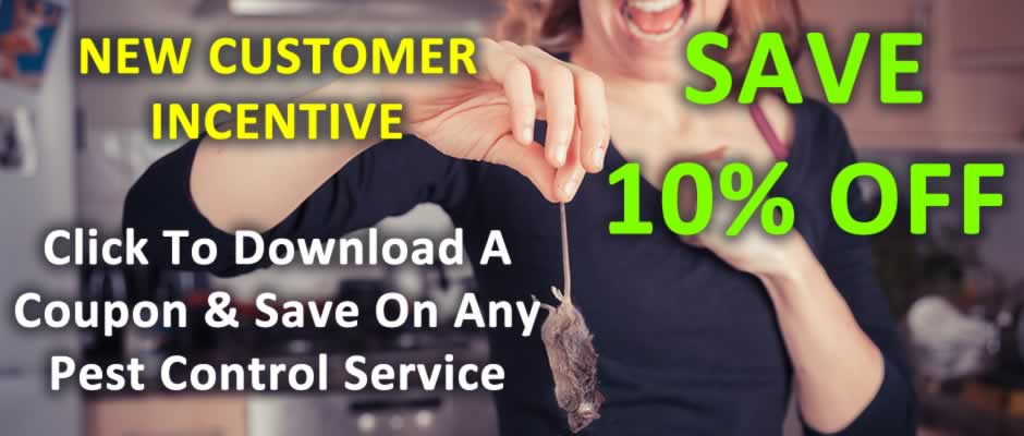New Customer Incentive, Save 10% On Any Pest Control Service