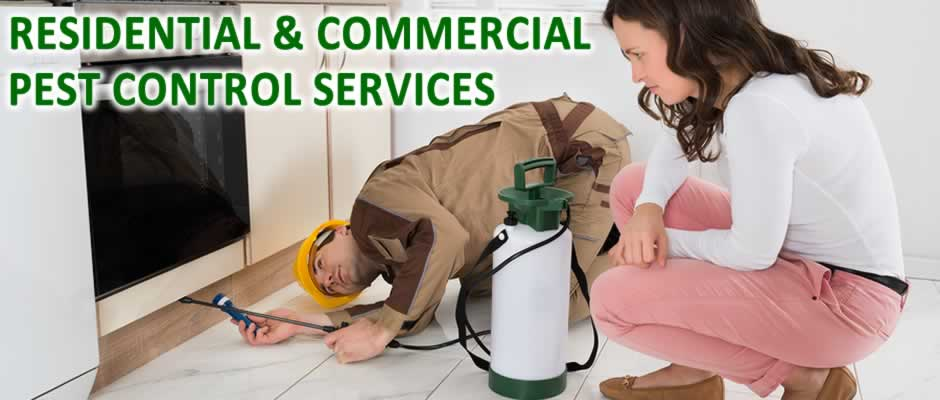 Residential and Commercial Pest Control Services
